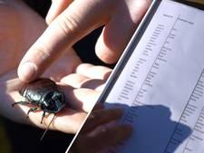 Duizenden kakkerlakken krijgen naam van ex