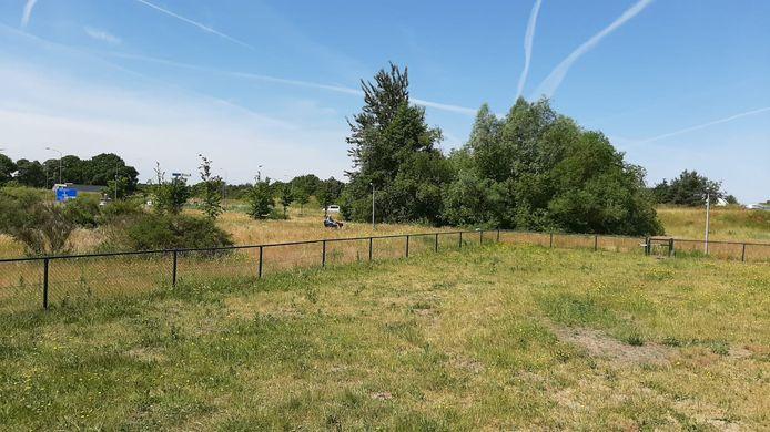 De schotelantenne zou kunnen komen naast de hondenren, net voor de plek van de struikjes links. Daarachter ligt de rotonde van de Groene Zoomweg en de Westermeenweg.