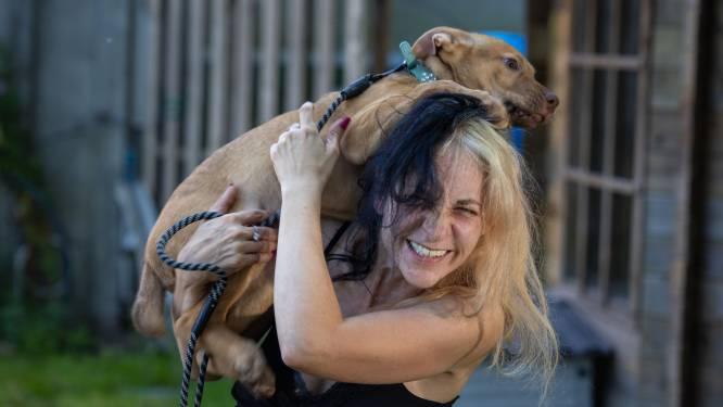 Chelsey ontfermt zich over afgedankte vechthonden: 'Ik ga voor ze door het vuur'