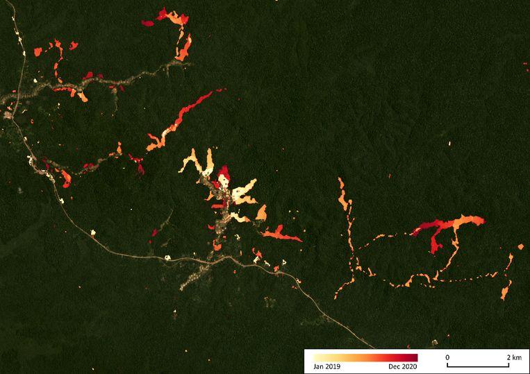 Het RADD-alarmsysteem onthult de ontbossing in Congo door selectieve bomenkap: wegen met daarnaast 'gaten' in het regewoud. Ontboste plekken lichten oranje en rood op.  Beeld Johannes Reiche