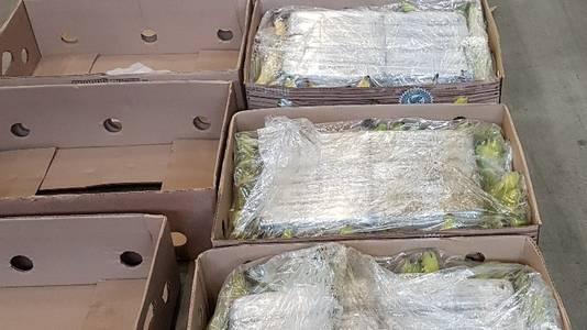 De drugs werden gevonden in deze dozen met bananen.