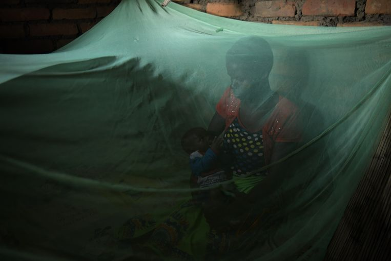 Violet Wilson laat zien hoe ze een muskietennet gebruikt. Beeld Thoko Chikondi