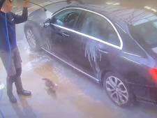 Piepjonge kitten springt uit auto en krijgt 'douche' in Tubbergse carwash