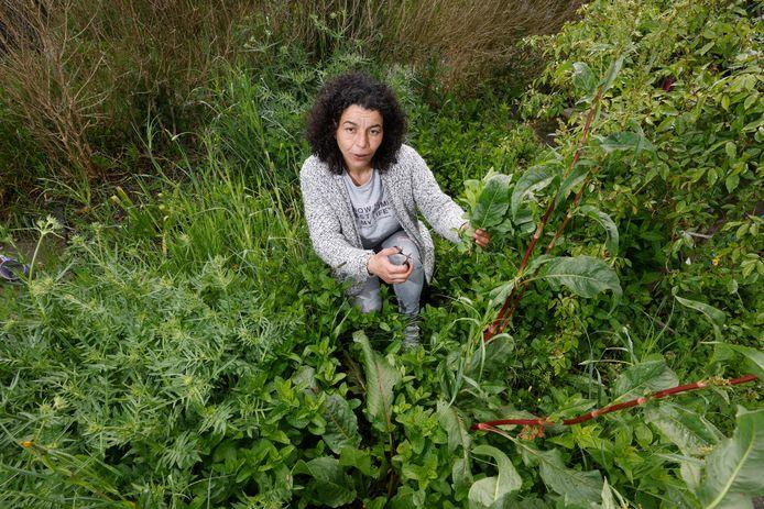 Touria Ben Abbas heeft een moestuinapp.