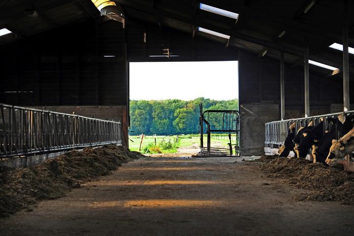 Uitbreidingsplannen van boerenbedrijven dichtbij natuurgebieden worden getoetst aan strenge stikstofregels.