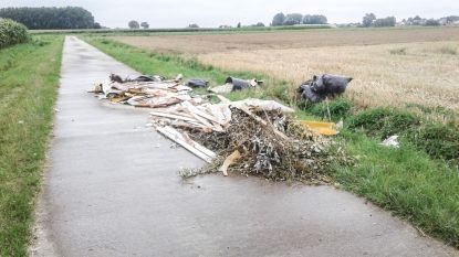 """""""Schaamteloos"""": Sluikstorter dumpt grote lading afval aan de Zesdagwandweg in Parike"""
