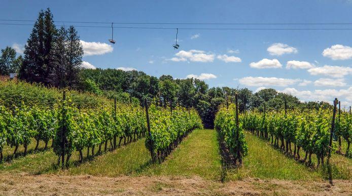 Wijndomein Entre-deux-Monts in Heuvelland