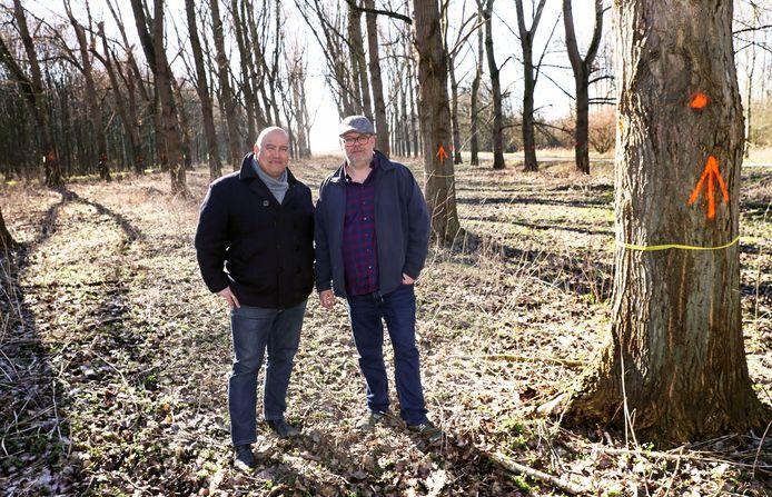 Stephan van Uden en Roy Masthoff bij enkele te kappen bomen in het Mallebos.
