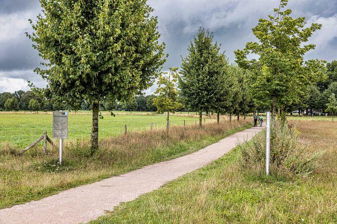 Links staat een bordje met informatie voor de bomen aan die kant van het pad, aan de rechterkant ontbreekt het bordje.