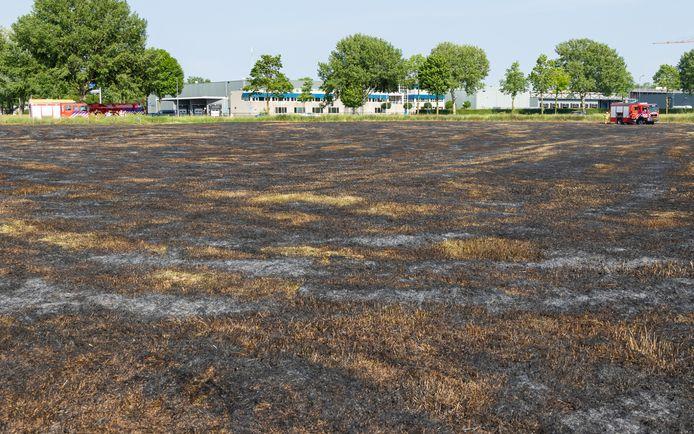2 hectare gras brandt weg in Den Bosch.