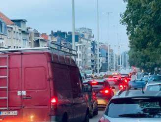"""Vlaams mobiliteitsexpert pleit voor realiteitszin: """"Een vlottere Aalsterse ring? Dat is een illusie. Er zijn simpelweg te veel auto's"""""""