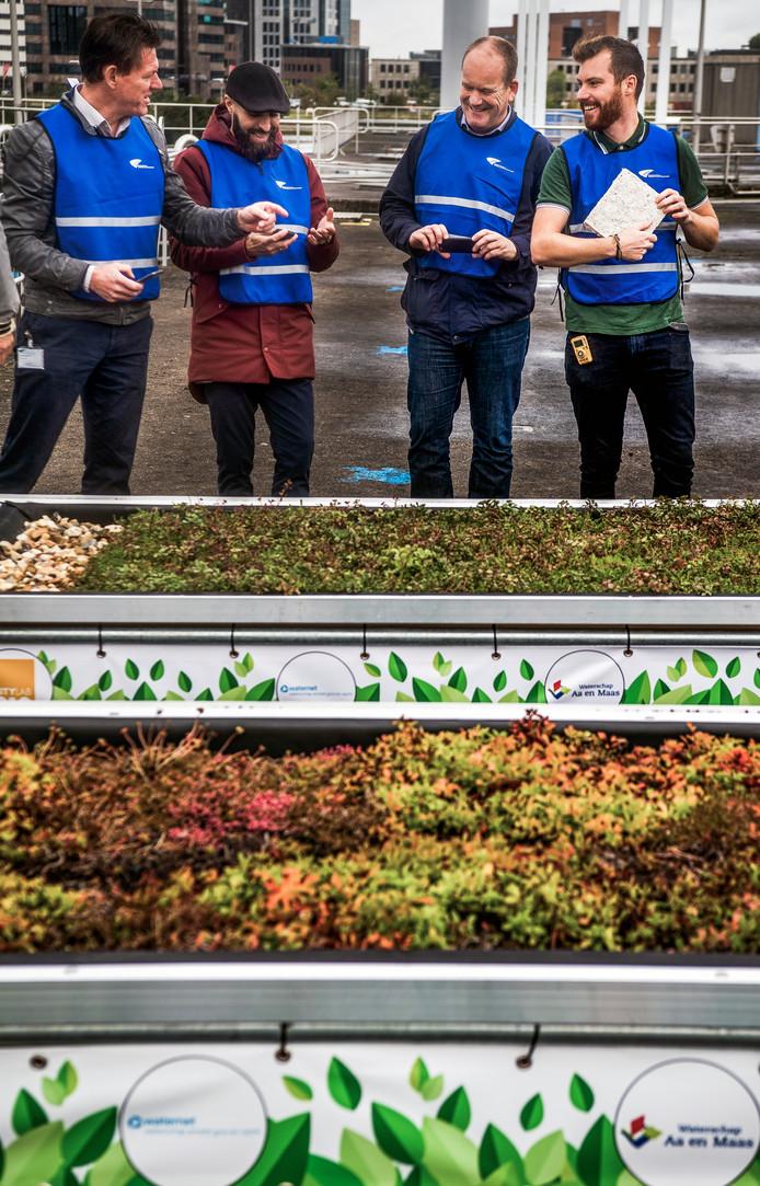 De mannen van BlueRoof presenteerden gisteren hun allereerste groene dak gemaakt van rioolafval in Capelle aan den IJssel.