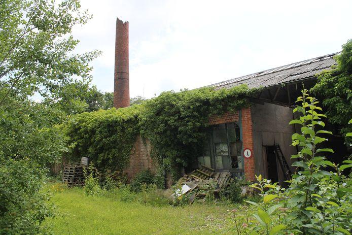 De gebouwen van Textiles d'Eeclo staan al jaren leeg en overwoekerd.