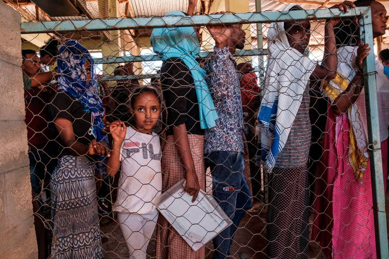 Eritrese vluchtelingen, die al lang in Tigray verblijven, staan in de rij voor voedsel in een vluchtelingenkamp.   Beeld AFP