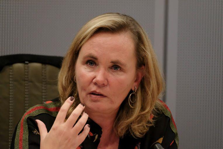 Minister Liesbeth Homans. Beeld BELGA