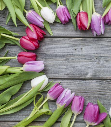 'Bedankt dat je mijn mama bent' en duizenden liefdevolle woorden meer