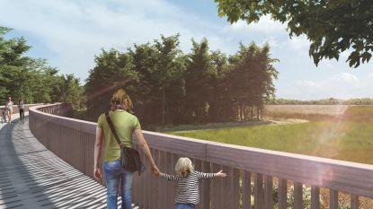 Vanaf 2020 fietsen door de heide: 300 meter lange 'steiger' zal beide zijdes Nationaal Park Hoge Kempen met elkaar verbinden
