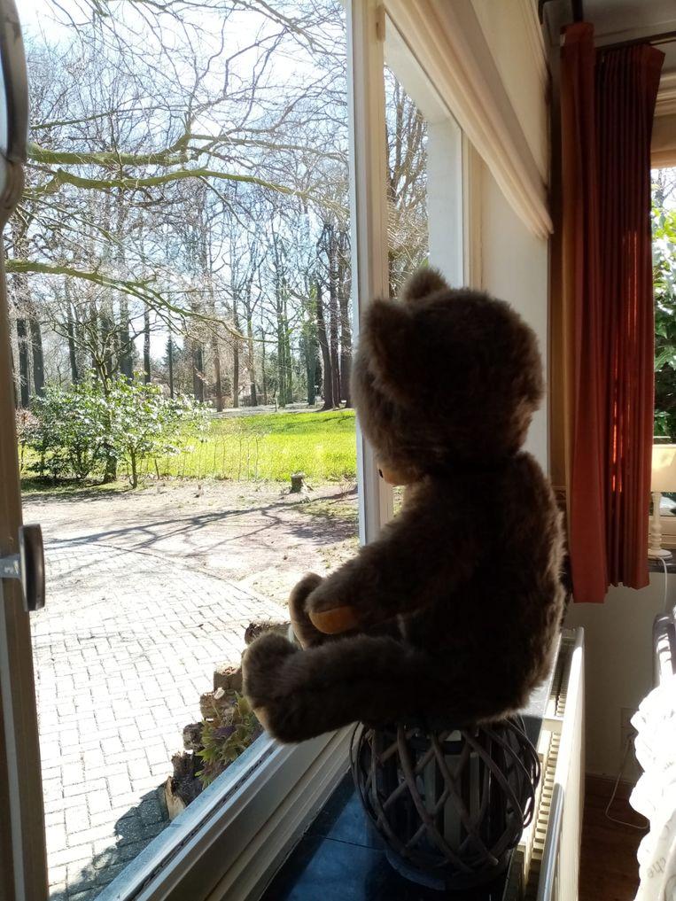 Ook in Wortel wachten de beren op jonge speurneuzen...