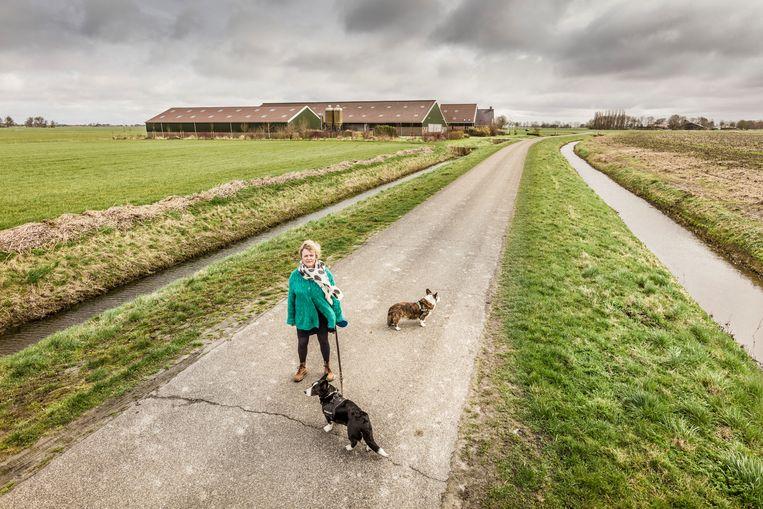 Jantien de Boer, met op de achtergrond één van de grootschalige boerderijen die in de plaats zijn gekomen van de traditionele boerderijen. Beeld Sjaak Verboom
