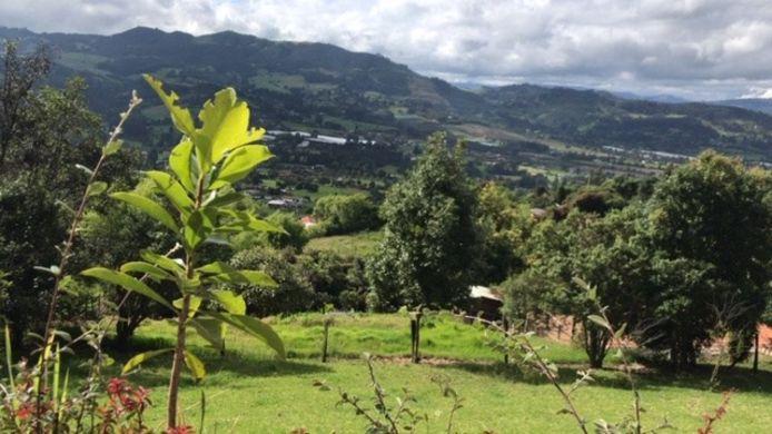 Tabio in Colombia