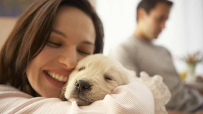 Waarom je een hond als je kind kan beschouwen