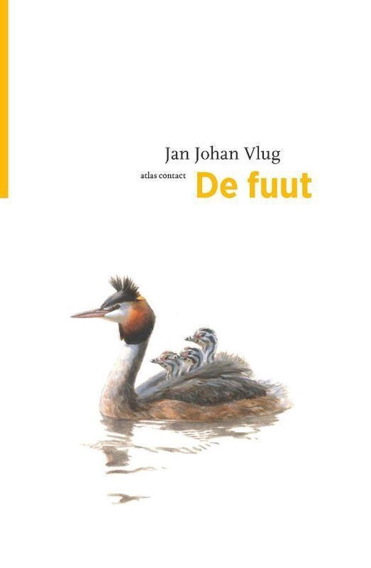 Jan Johan Vlug: De fuut. Beeld Atlas Contact