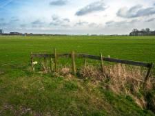 Hoe hard is het 'nee' tegen de bouw van het energielandschap in de polder Rijnenburg?
