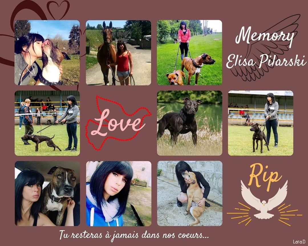 Elisa zelf was gespecialiseerd in hondentraining en had een passie voor hondensportwedstrijden.