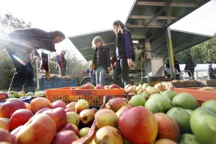Een bijna eindeloze stroom appels. Archieffoto William Hoogteyling
