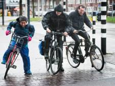 Stormslachtoffer is 58-jarige man uit Lopik, rest van meldingen was 'niets vergeleken met wat er in Linschoten gebeurde'