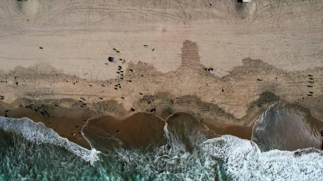 VS duiden vrachtschip aan dat mogelijk betrokken is bij groot olielek in Californië
