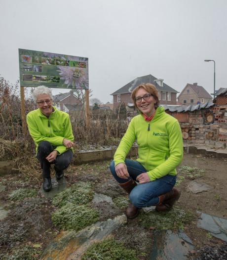 Stichting in Veldhoven wil vergroenen: Tegel eruit, groen erin