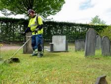 Klachten over onkruid op begraafplaats in Wapenveld met Vaderdag; 'Het woekerde overal door'