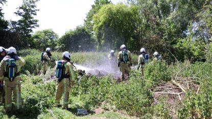 Afval in brand gestoken op afgelegen weide, vuur kan zich ondanks droogte niet verder verspreiden
