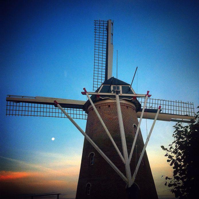 Twee authentieke molens heeft de gemeente Rucphen wel, zoals op de foto De Heimolen. Windturbines waren tot op heden taboe, maar daar komt mogelijk verandering in.