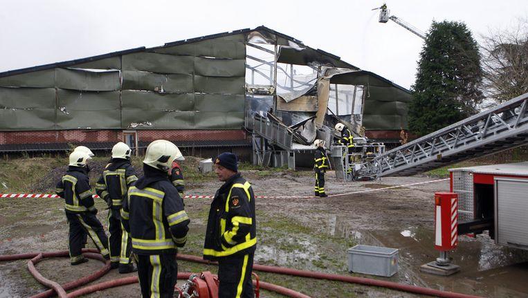 Bij een brand in deze stal in Leunen, Limburg, kwamen 4000 varkens om het leven. © ANP Beeld