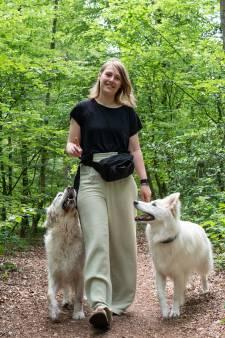 Nederland gaat van het slot en dat zorgt voor problemen bij 'coronahonden': 'Ze zijn niks gewend'