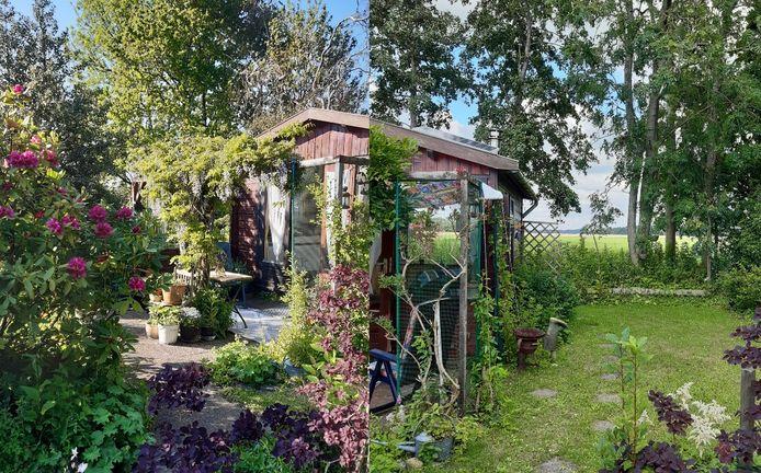 De foto's van de tuin van Ellen