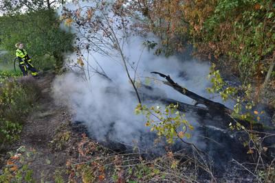 Stuk bos aan zuidkant Mastbos in Breda vat vlam