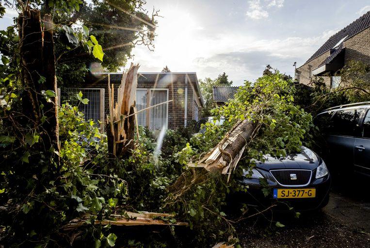 Een boom is op een auto gewaaid tijdens een windhoos in Leersum. Beeld ANP Sem van der Wal