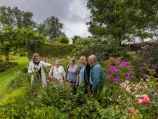 Honderdduizend bloembollen op 3500 vierkante meter: voor de laatste keer open tuin bij de familie Schat