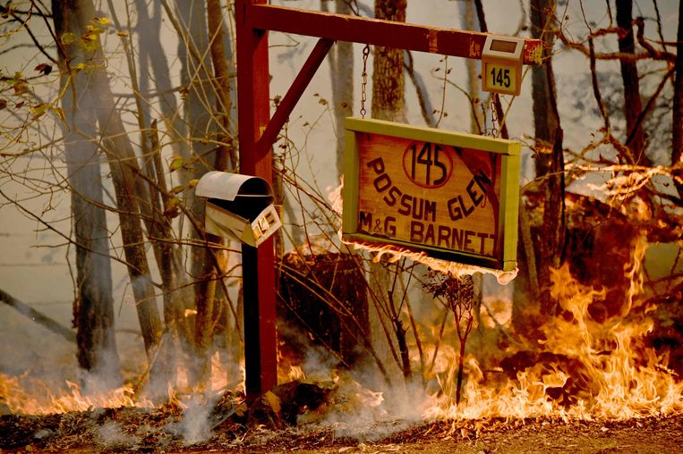 De brandweer verwacht dat het zeker tot eind volgende week duurt voordat de branden onder controle zijn. Beeld AFP