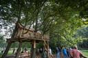 Het vrouwenbos, een van de belevingsplekken op het Breinpad.