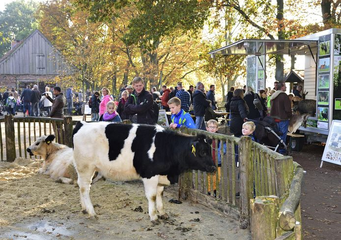 De kinderboerderij in de Nordhornse dierentuin.