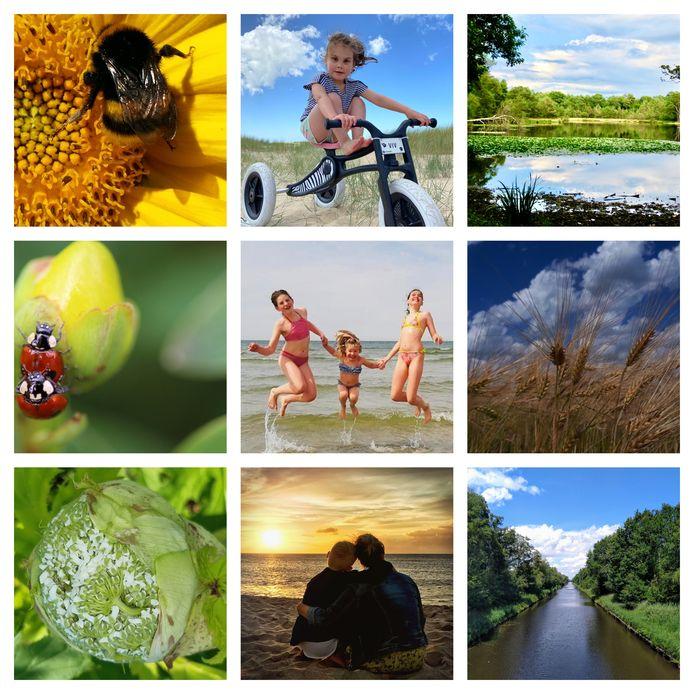 Een selectie van zomerse foto's die ingezonden zijn voor de eerste week van ED Zomerfoto 2020.