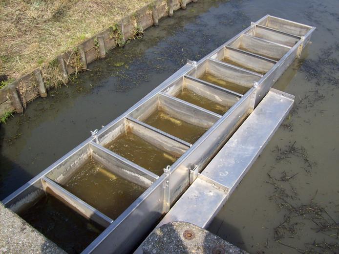 Doesburg krijgt één van de grootste vispassages van Nederland, tussen de IJssel en de Oude IJssel. Hoe de vistrap eruit komt te zien is nog onduidelijk.