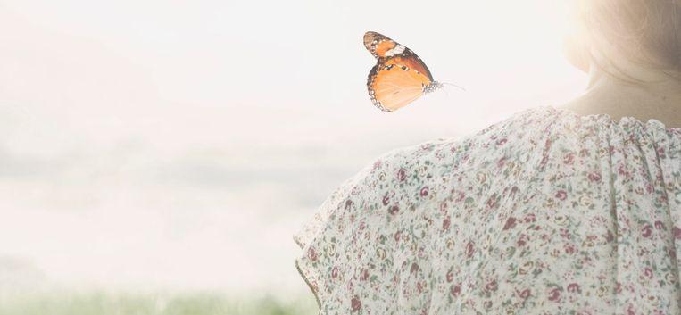 De Dag Nadat Vervolg 13 – Mijn hospicegast overleed
