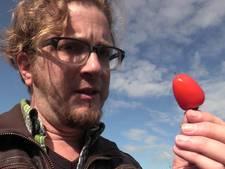 De moestuin in: #34 – Peper in je &#$%