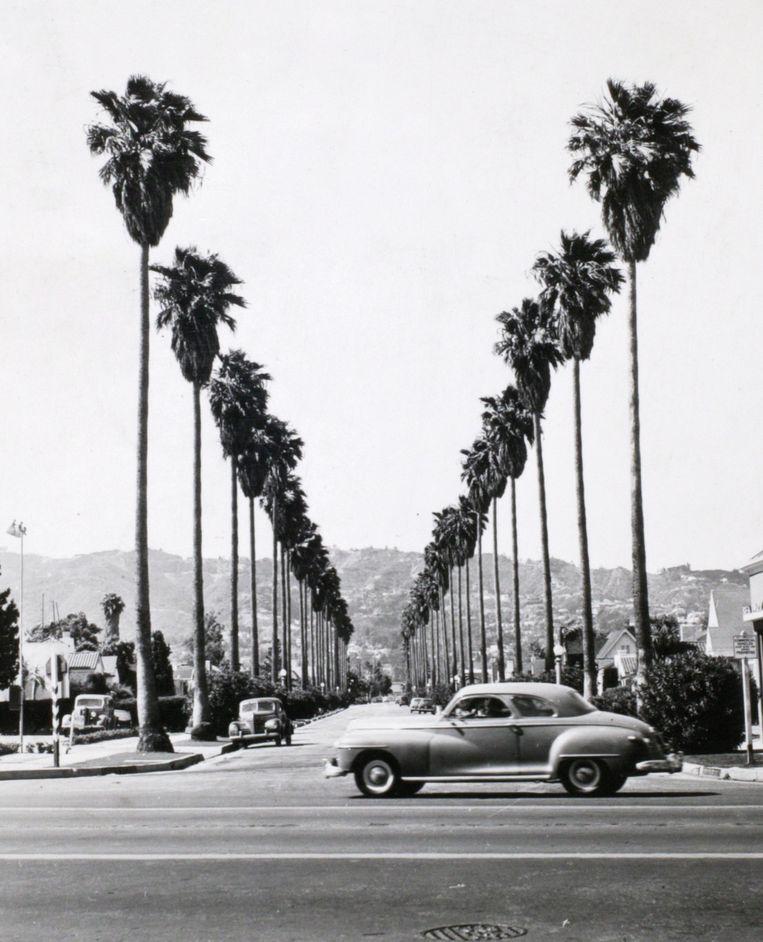 Los Angeles in de jaren vijftig. Beeld Getty