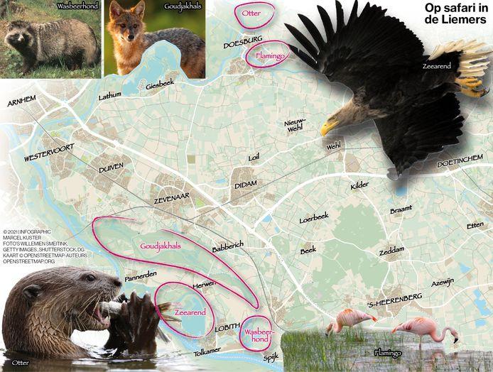 De safarikaart van de Liemers.